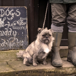 Dogs & muddy boots welcome.