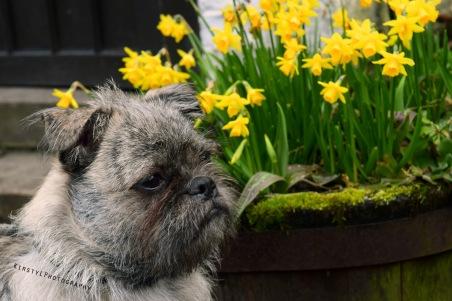 A spring days rest.